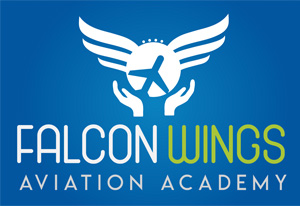 Falcon Wings
